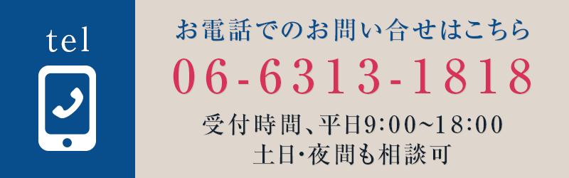 06-6313-1818